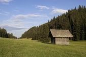 Horské údolí v rakouských Alpách v létě — Stock fotografie