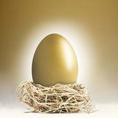 Giant golden nest egg — Stock Photo