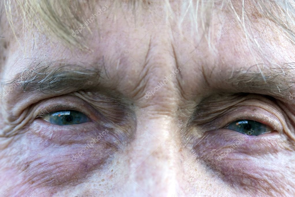 Very short depth of field focused on inner eye and wrinkles around eye in foreground  Stock Photo #2810995