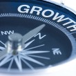 Growth word on compass — Stock Photo