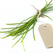 Chives and label — Stock Photo
