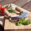 Herbs outside — Stock Photo