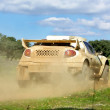 Car in competition in rally off-road. — Stock Photo #2879222