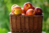 Small hamper with red peaches. — Stock Photo