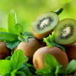 Kiwis and aromatic herbs. — Stock Photo