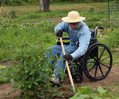 Handicapped farmer — Stock Photo