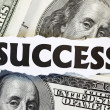 Stock Photo: Monetary Success