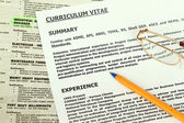 Curriculum Vitae Form — Stock Photo
