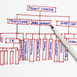 Organization chart — Stock Photo #3769789