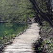 Royalty-Free Stock Photo: Pathway in Plitvice Lakes