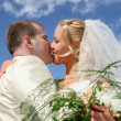 Wedding kiss — Stock Photo #2830003