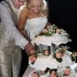 Happy couple cutting wedding cake - Stock Photo
