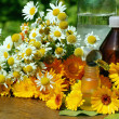 Foto Stock: Medical calenduland camomille