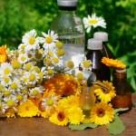 Medical calendula and camomille — Stock Photo