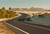 Winding Road in Desert — Stock Photo