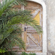 Old hidden door — Stock Photo #2717133