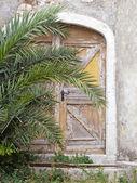 Old hidden door — Stock Photo