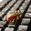 Stock Photo: Computer bug 2