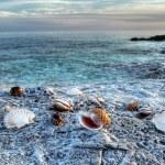 Adriatic sea 2 — Stock Photo #2752468