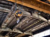 Haku żurawia — Zdjęcie stockowe