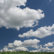 Summer cloudscape — Stock Photo