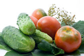 Tomatoes and cucumber — Stock Photo