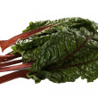 Colorful Fresh Swiss Chard - Stock Photo