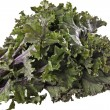 Red Kale — Stock Photo #2997192