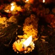 Stock Photo: Floral Diwali Lamps