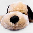 Stock Photo: Cuddly Toy Dog