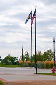 Colorado devlet ve amerikan bayrakları — Stok fotoğraf