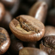 Fragrant fried coffee beans — Stock Photo #2778200