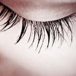Great eye - MACRO — Stock Photo #3480662