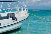 Caribbean Excursion — Стоковое фото