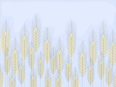 Wheat field — Stock Vector
