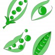Peas — Stock Vector