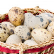 Quail eggs in a straw basket — Stock Photo