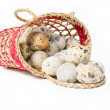 Quail eggs in a straw basket — Stock Photo #2772719