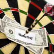 Bullseye,conceptual,success — Foto Stock