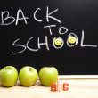 Back to school, inscription on blackboard — Stockfoto