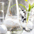 Laboratory glassware containing plants in laboratory — Stock Photo