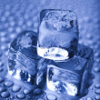 Blue and shiny ice cubes — ストック写真
