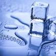 Melting ice cubes — Stockfoto