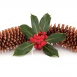 Holly and Pine Cone Decoration — Stock Photo