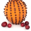 Orange, Cloves and Cranberries - Stock Photo