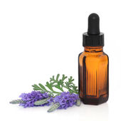 Lavender Herb Flower Therapy — Stock Photo