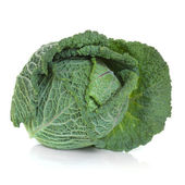 Savoy Cabbage — Foto Stock
