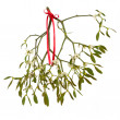 Stock Photo: Mistletoe