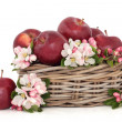 Stock Photo: Apples and Flower Blossom