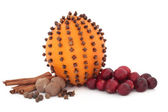 Cranberry, Spices and Orange — Stock Photo